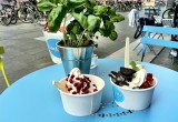 WONDERPOTS frozen yogurt Foto 2439 von tanis