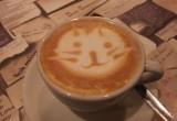 Café Barista Foto von